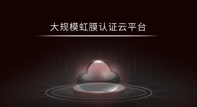 大规模虹膜认证云平台