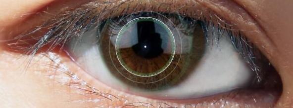 虹膜识别—数据管理平台