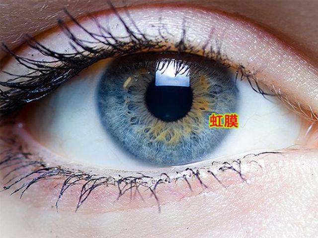 虹膜识别,智能出行新方式