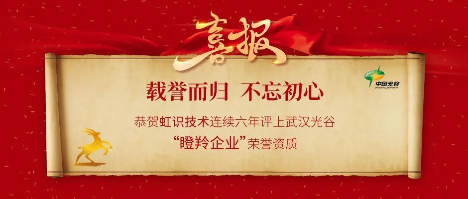 """虹识技术连续6年评上武汉光谷""""瞪羚企业""""荣誉资质"""